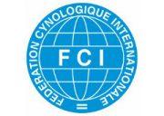 fci-2