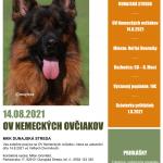 OV Nemeckých ovčiakov 14.8.2021
